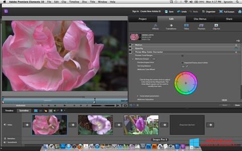 स्क्रीनशॉट Adobe Premiere Elements Windows 8.1