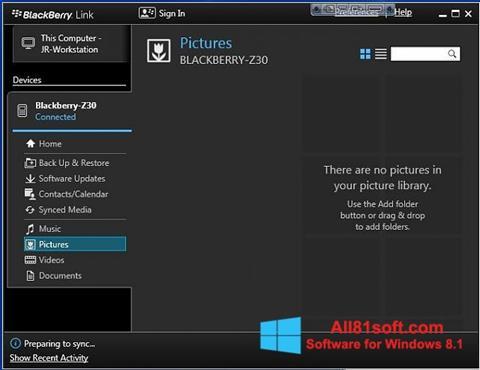 स्क्रीनशॉट BlackBerry Link Windows 8.1