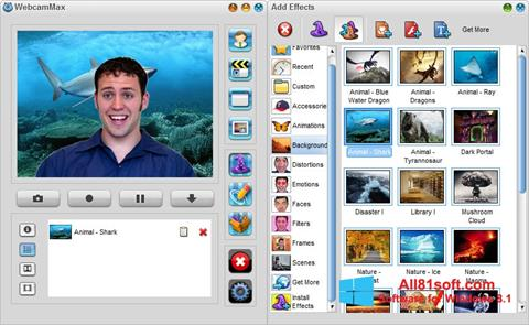 स्क्रीनशॉट WebcamMax Windows 8.1