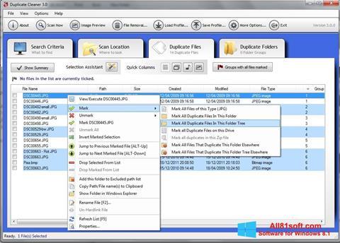स्क्रीनशॉट Duplicate Cleaner Windows 8.1