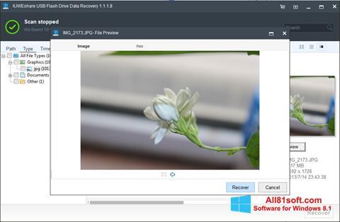 स्क्रीनशॉट USB Flash Drive Recovery Windows 8.1