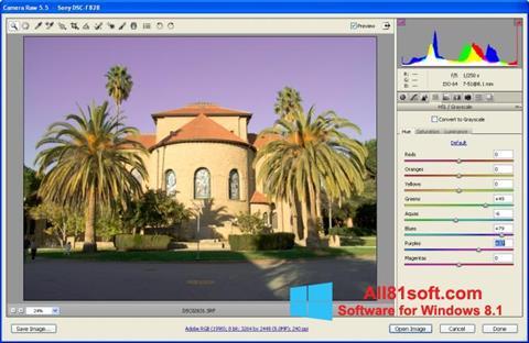 स्क्रीनशॉट Adobe Camera Raw Windows 8.1