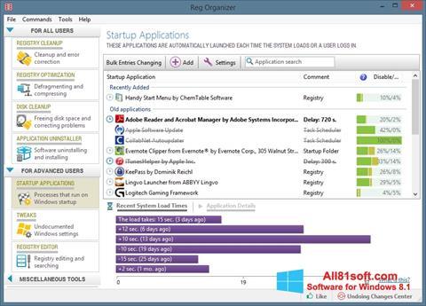 स्क्रीनशॉट Reg Organizer Windows 8.1