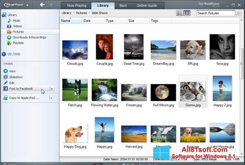 स्क्रीनशॉट RealPlayer Windows 8.1